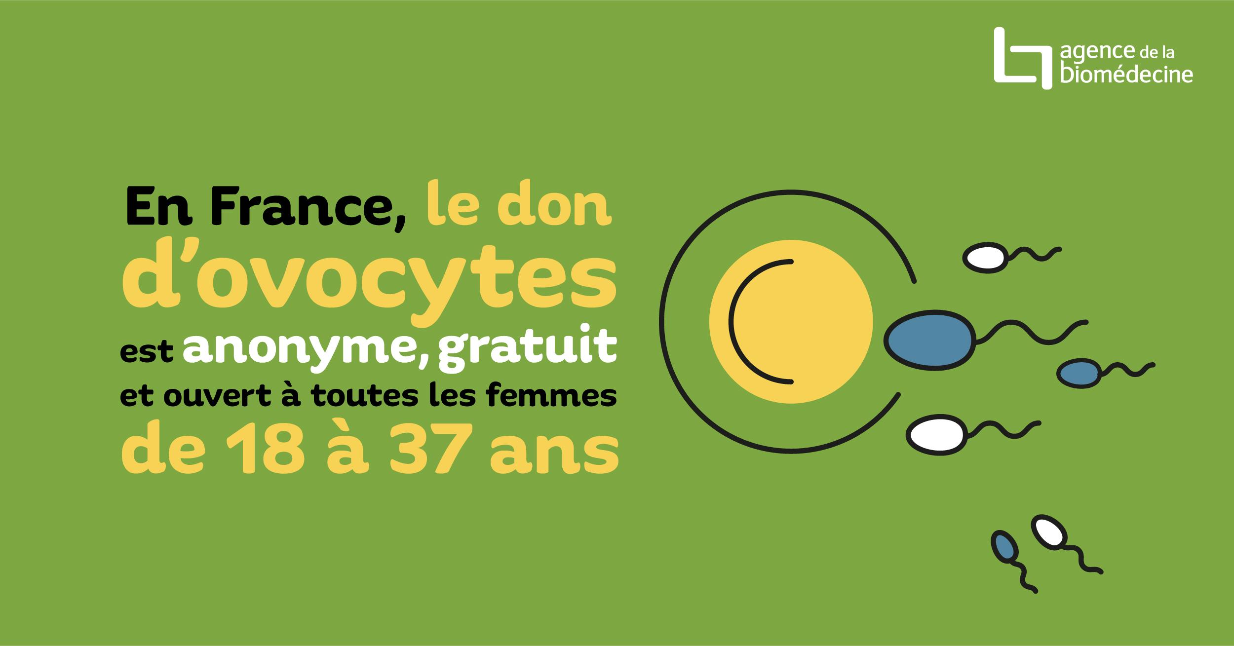 Don d'ovocytes - Le site d'information de l'Agence de la Biomédecine sur le don d'ovocyte en France